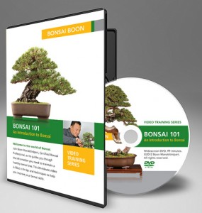 """BONSAI 101:"" An Introduction to Bonsai Training DVD"