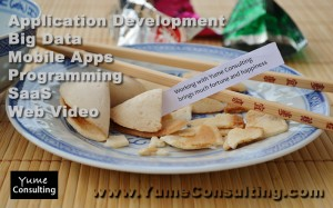 Venture Funded Application Development Service Launch by Yume Consulting, LLC