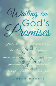 Christian Book Centers on Dealing with Waiting on God's Promises