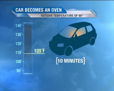 Child Hot Car Deaths a Troubling Epidemic