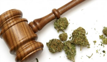 Andrew D. Stine Palm Beach Drug Defense Lawyer Says The State Will do Anything!