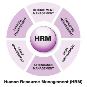 Timothy Singhel HR BUZZ: Top Human Resource Management Software