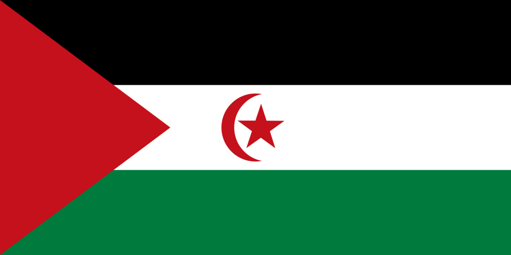 """28 African Countries Call On The Immediate Suspension Of The ''SADR"""""""
