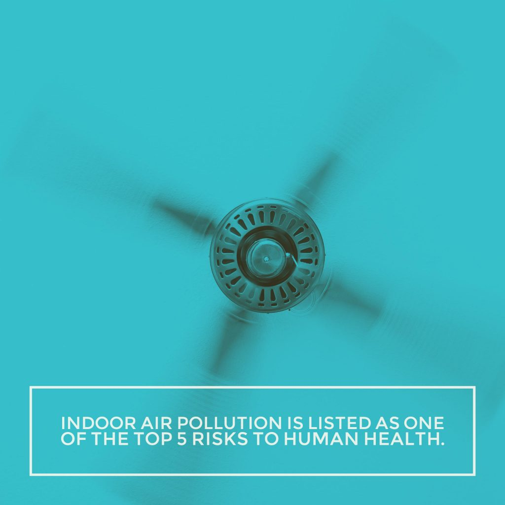 5 Things You Probably Didn't Know About Indoor Air Quality