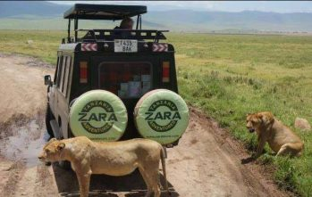 Zara Tours Uses Tourism To Fight Poaching
