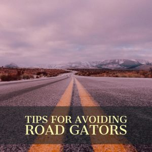 What Are Road Gators?