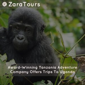 Award-Winning Tanzania Adventure Company Offers Trips To Uganda