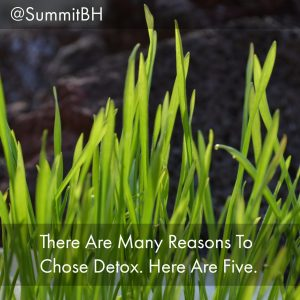 Summit Detox Treatment Center Offers 5 Reasons To Choose Drug Detox