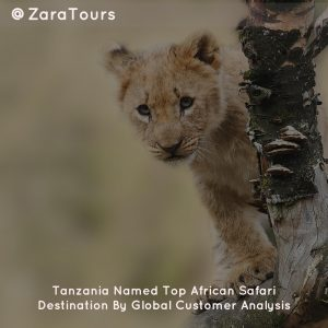 Tanzania Named Top African Safari Destination By Global Customer Analysis