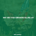 What Are Fast Food Emissions And Why Are They Killing Us?