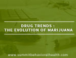 The Evolution Of Marijuana - NJ Addiction Rehab To Host Lunch & Discussion