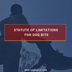 Philadelphia Dog Bite Attorney – How Long After A Dog Bite Can A Claim Be Filed?