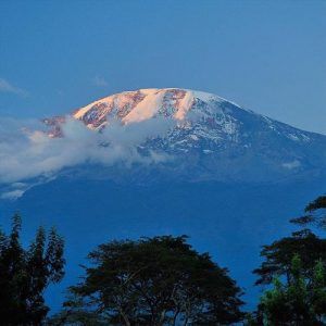 Safari And Kilimanjaro Trek Standout In Tanzania And Beyond