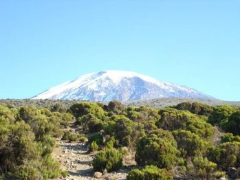 "Climb Africa's Tallest Mountain With Author Of ""Sons of Kilimanjaro"""