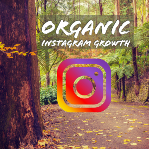 Organic Instagram Growth for Business – Best Practices