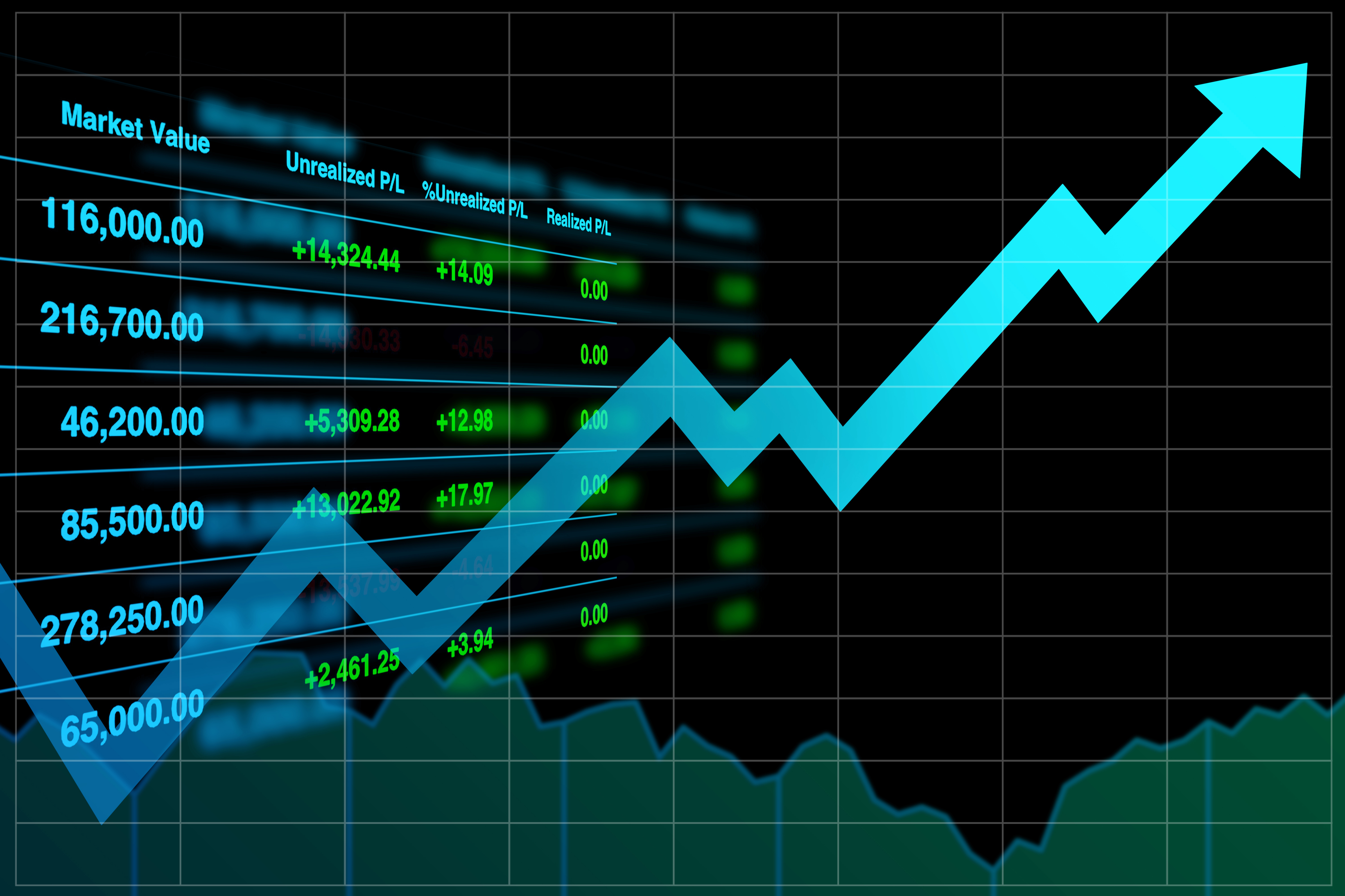 Top Growth Stocks and Best Blue-Chip Stocks to Buy in 2019